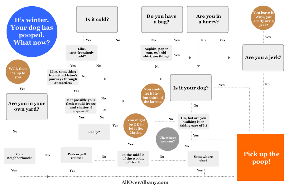 pick_up_dog_poop_flow_chart
